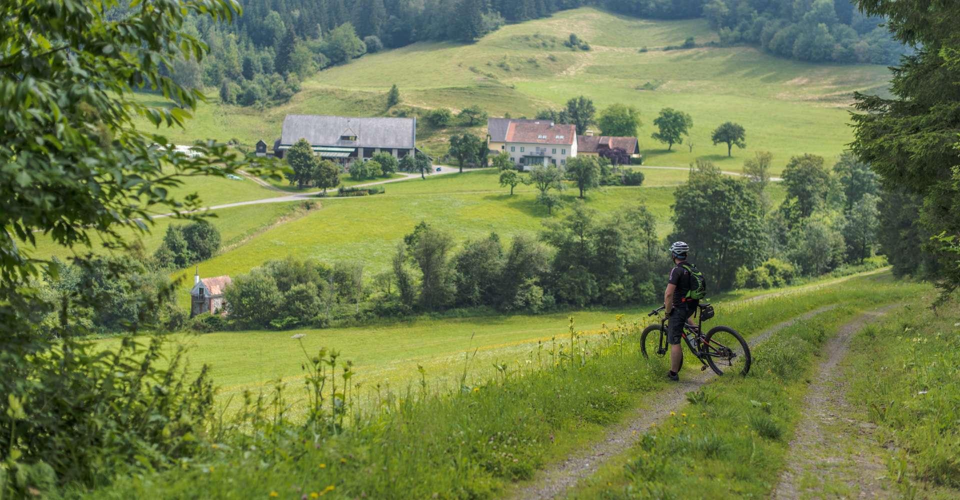 <p>Einige Mountainbike Touren bietet auch das Murtal im Herzen der grünen Steiermark</p> Copyright: