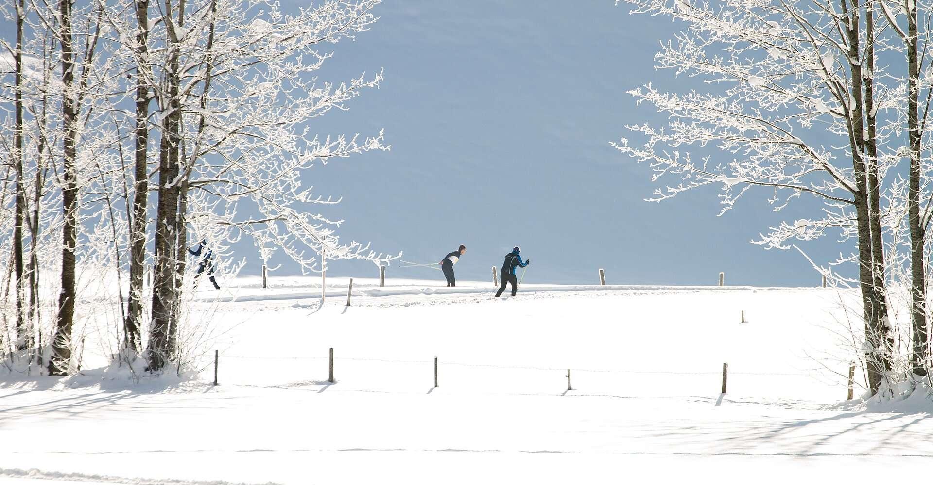 Langlaufen in der Steiermark - Loipen entdecken