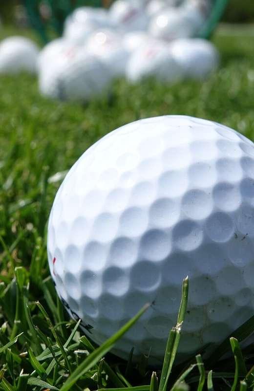 Golfer willkommen!  - In unseren Golf-Partnerbetrieben fühlen sich Golfer ganz besonders wohl!